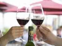 Grape or Wine Harvest?