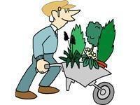 Image: Let Nature Paint Your Garden