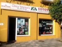 Image: Vet in Sotogrande, Veterinario en Sotogrande