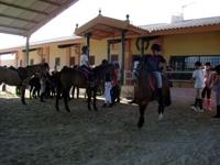 Pony Club Estepona