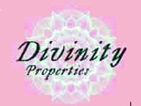 Divinity Properties