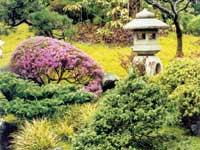 The world of the Japanese garden