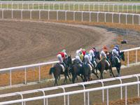 The home of horse racing in Spain
