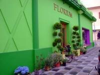 The Sotogrande Florist