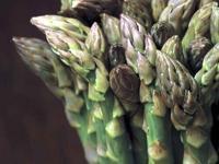 Image: Asparagus