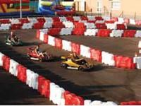 Go-Kart Circuit & Veterinary in Estepona