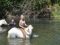 Riding barefoot horses on holiday is natural and kind to horses