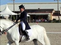 Dressage Competition Estepona