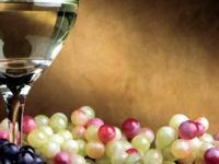 Image: Fruto Noble Sauvignon Blanc