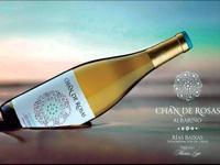 BODEGON GALLERY Wine Club
