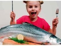 Image: Should we stop eating fish
