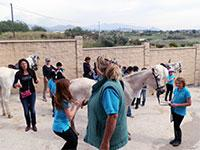 Pony Club Costa del Sol Estepona