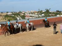 Pony Club Costa del Sol Estepona
