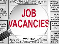VACANCIES IN WEB EXPRESS DIRECTORIES -